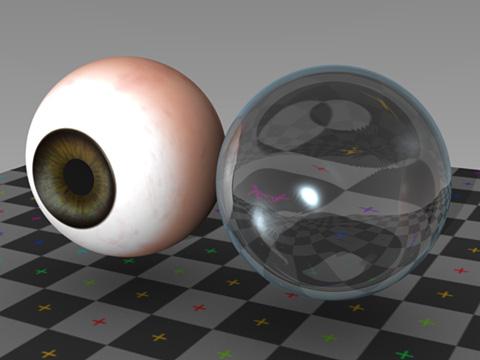 左側が強膜・虹彩・瞳孔、右側が角膜