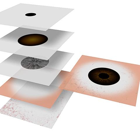 人体/眼球のテクスチャ画像「基本色(カラー)マップ用」のレイヤー構成