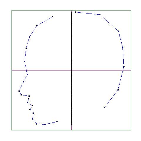 横顔の輪郭を作成
